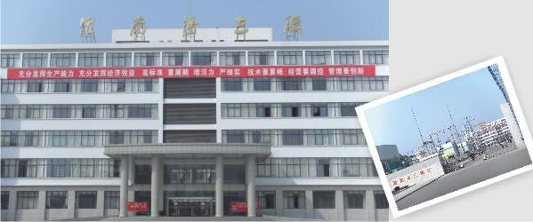 安徽淮南矿业集团潘三矿案例施工项目