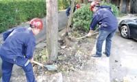 中兴公司志愿者带头清理城市垃圾