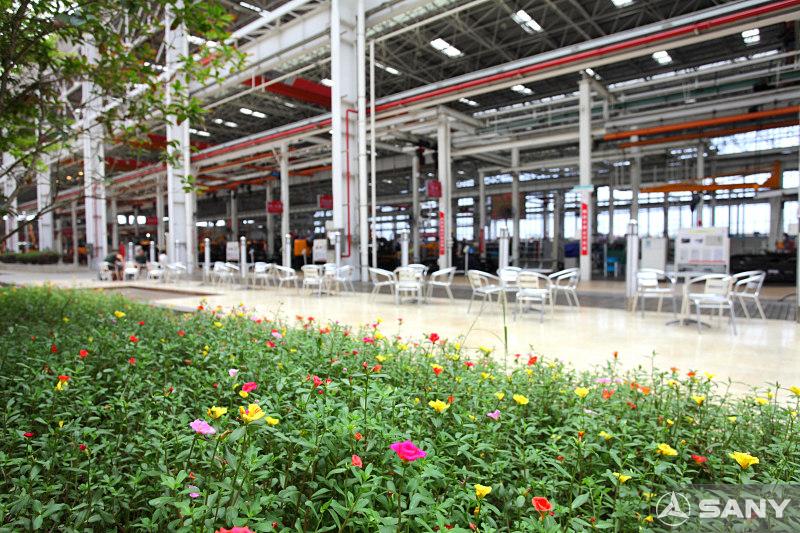 三一厂区绿化带