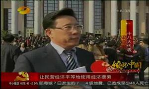 湖南卫视:十八大采访梁稳根